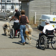 rando fauteuil roulant
